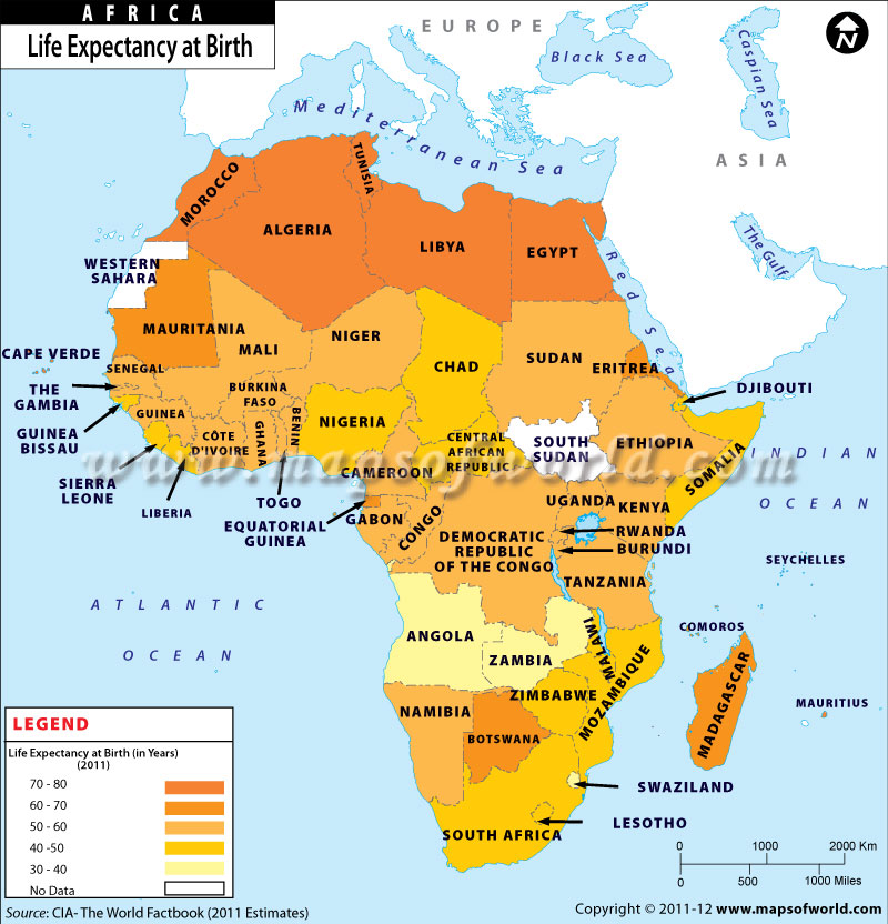 Life Expectancy at Birth in African Countries