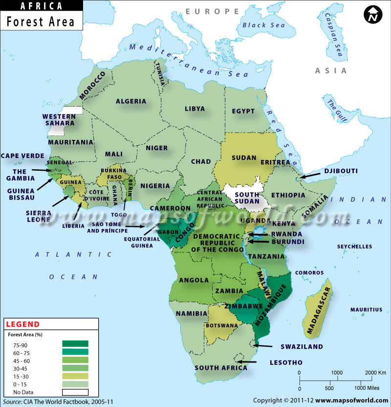 Map of african countries by forest area african countries by forest area gumiabroncs Gallery