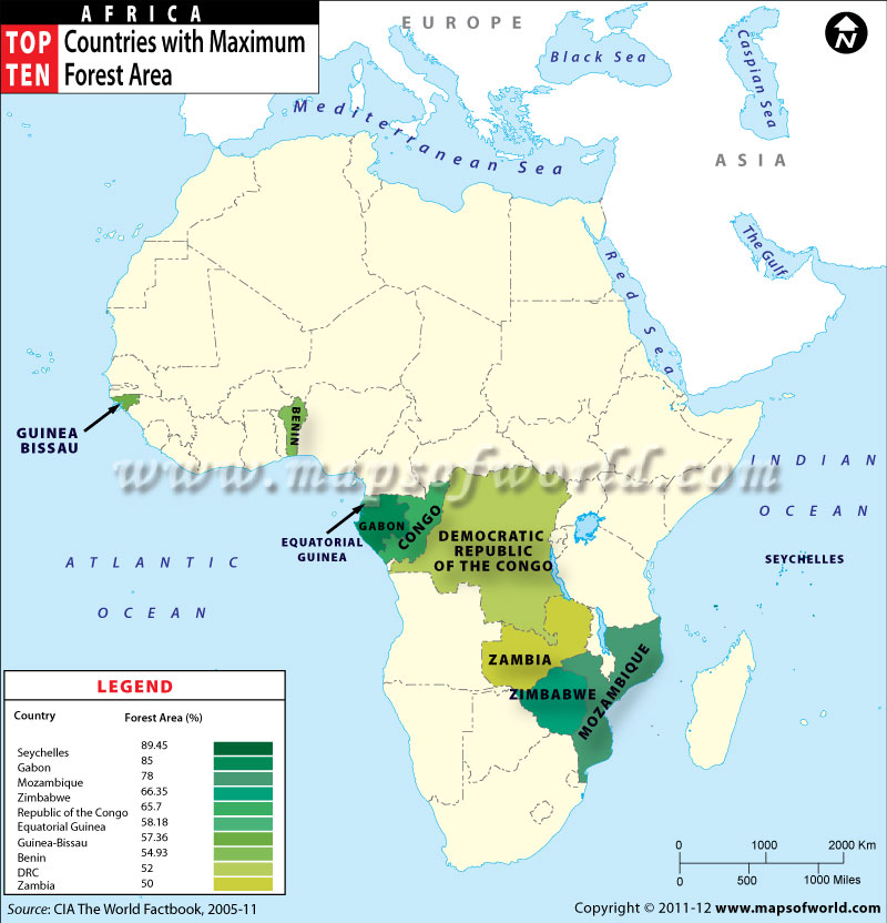 Map of African Countries by Forest Area