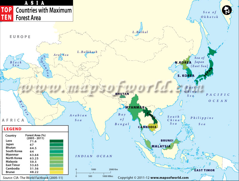 Map of Asian Countries with Maximum Forest Area