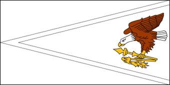 Blank American Samoa Flag