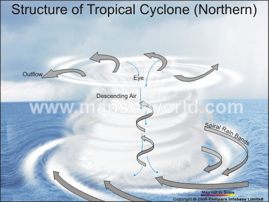 Structure of A Tropical Cyclone(Northern)