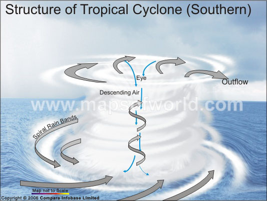 Structure of A Tropical Cyclone(Southern)
