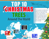 Infographic on Biggest Christmas Trees