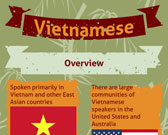 Infographic of Vietnamese Language