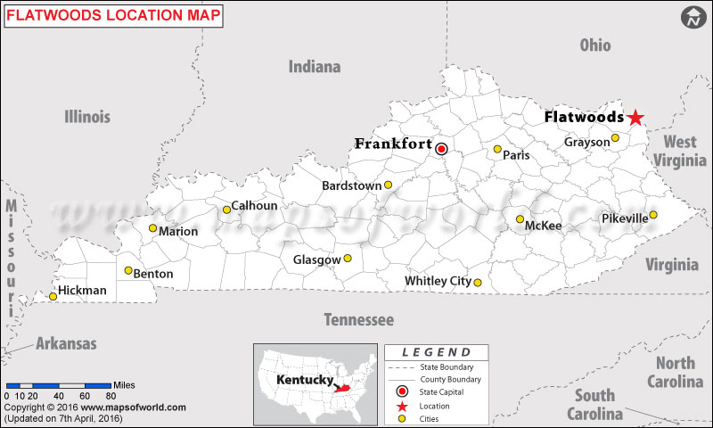 Where is Flatwoods , Kentucky