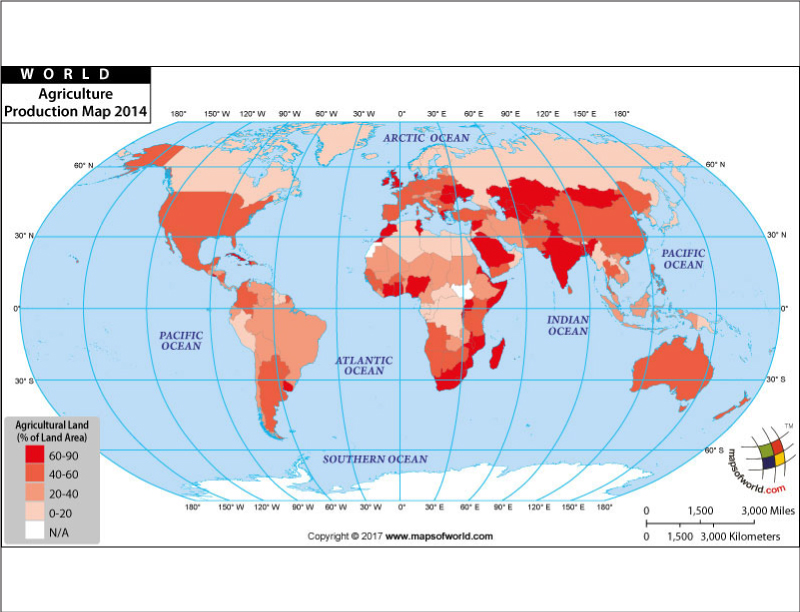World S Agricultural Production Countries On Map