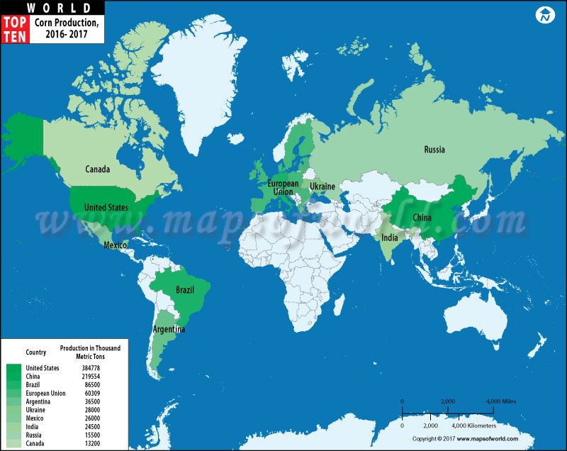 Top 10 corn producing countries in the world