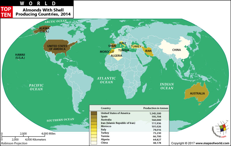 World Top Ten Almond Producing Countries Map