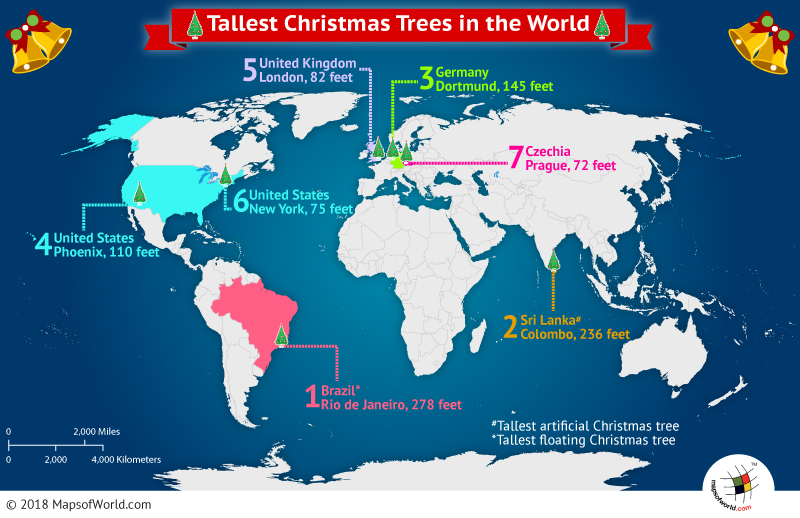 world-tallest-christmas-trees Map Airports Usa on usa security, usa map houston texas, usa earthquake fault lines map, usa park map, usa canada map north america, usa turbulence map, usa sea ports map, airports in the us map, usa city map, usa points of interest map, us international airports map, all of us airports map, usa state map, usa airline map, usa trucking map, usa bank map, usa map memphis tn, usa main highways map, usa tourist destinations map, usa tunnel map,