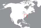 locator-Delaware (DE)