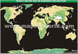 World Physical Map With Colors