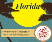 Infographic on Florida Facts