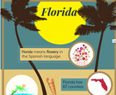 Infographic Of Florida Fast Facts