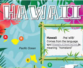 Infographic Of Hawaii Fast Facts