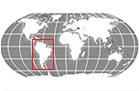 South America Globe Locator