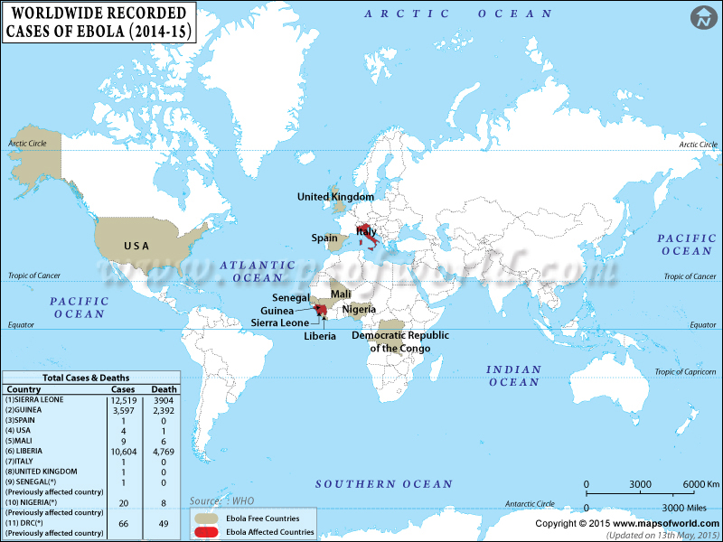 ebola outbreak essay Ebola outbreak an unknown virus cedric smith strayer university i have been doing some research on ebola, and here is what i have found out ebola and hepatitis c.