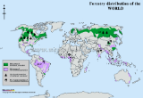 World Forestry Distribution Map
