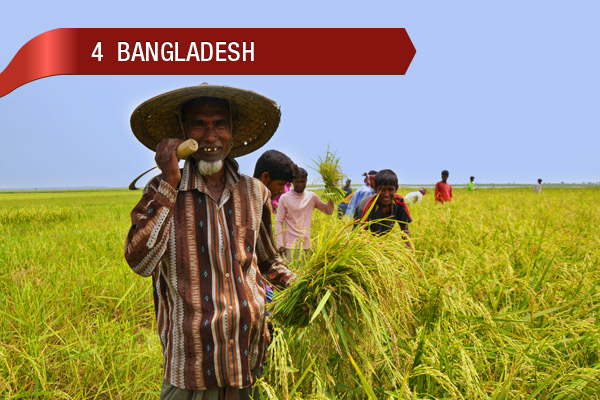 Not asian country worlds third largest wheat producer with